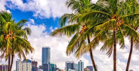 Florida real estate agent